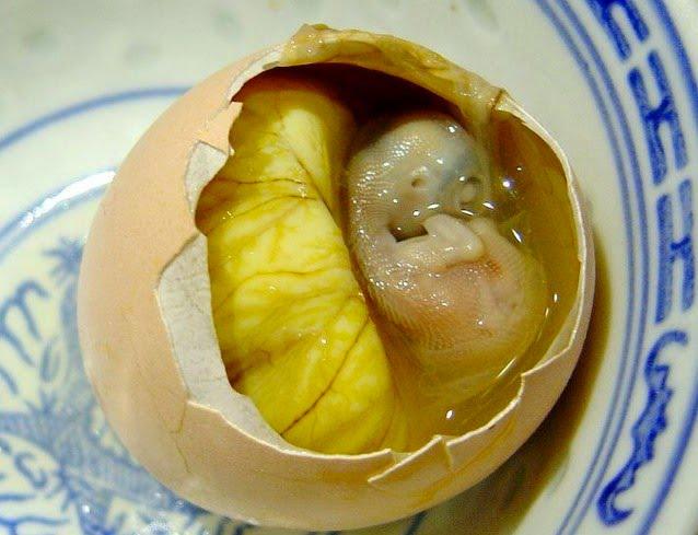 embrione crudo